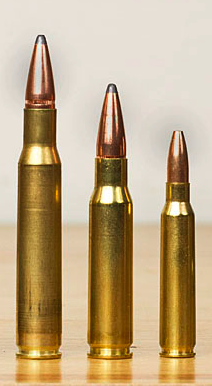 Picture showing AR-15 ammo is smaller than hunting ammo